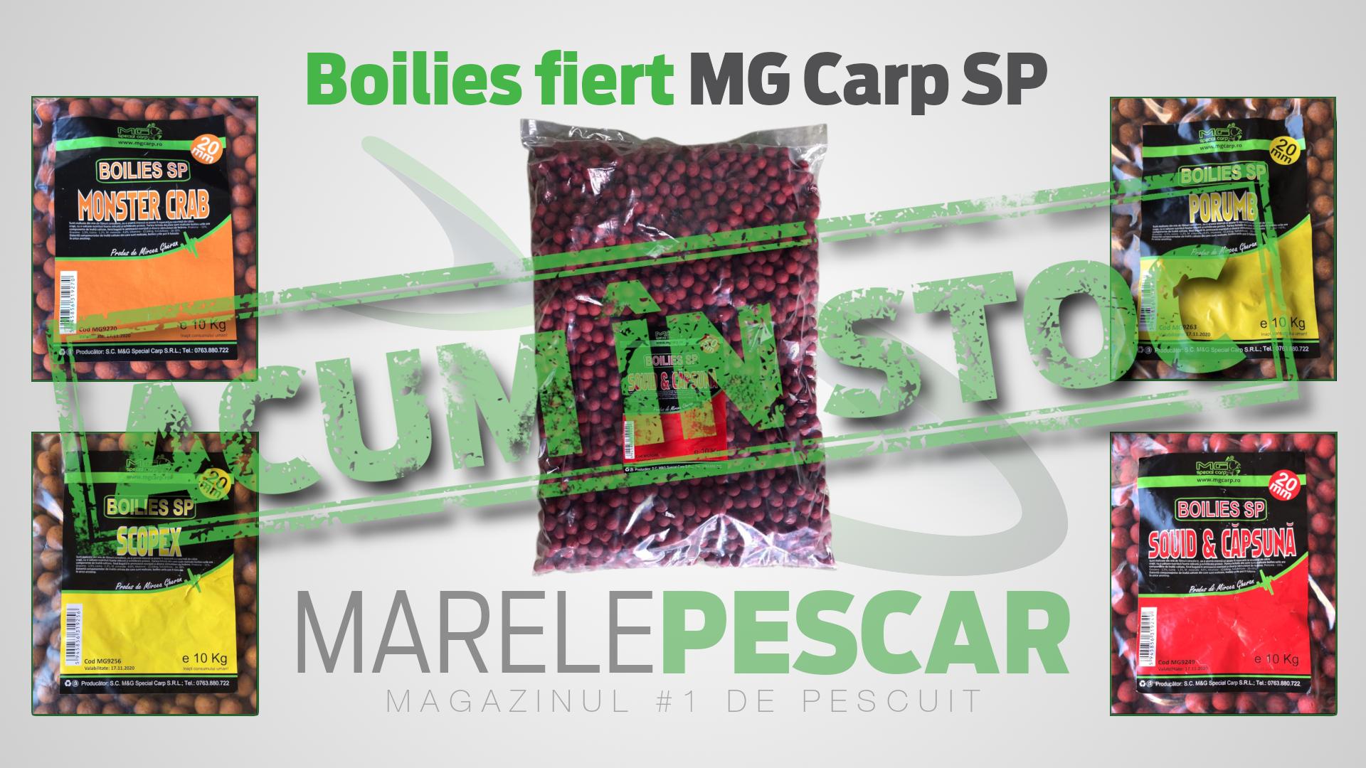 Boilies fiert MG Carp SP (acum în stoc)