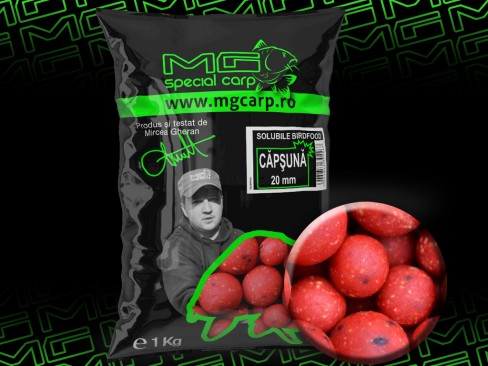 Boilies MG Special Carp Solubile Birdfood 20mm 1kg