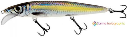Vobler Salmo Whacky WY12F SCS 12cm/14g
