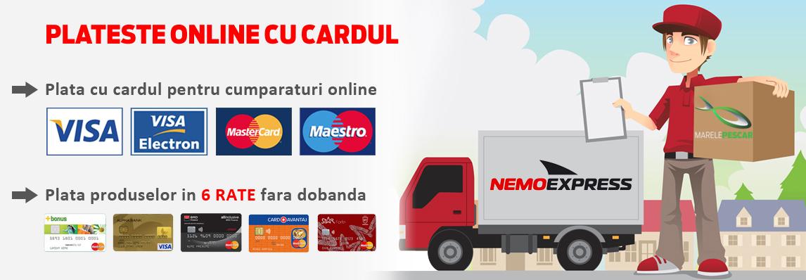 Plata online cu card-ul